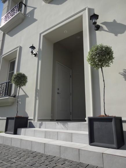 株式会社LEMO様邸モデルハウス ロシアンオリーブの鉢植え