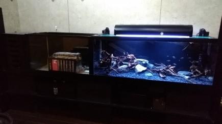 姫路熱帯魚エクステリア