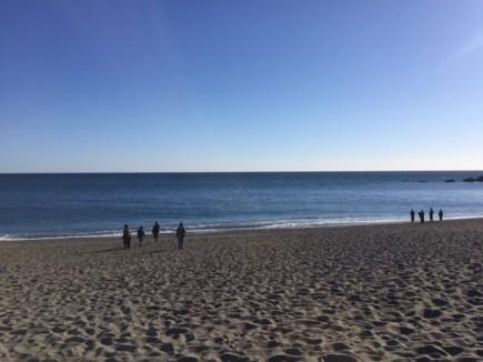 桂浜 水平線