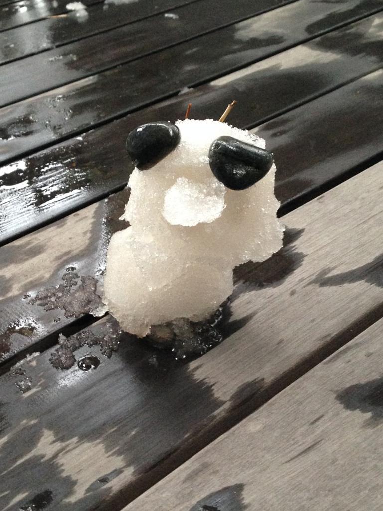 雪遊び パンダ?