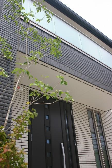 加古川市U様邸玄関前にシンボルツリーのアオダモ